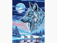 Животные и рыбки Волки под луной