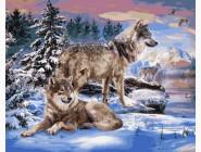 Волки на брегу реки
