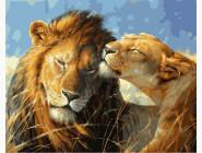 картина по номерам Влюбленные львы
