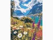 Пейзаж и природа Лето в горах