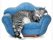 Коты и собаки Крепкий сон