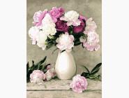 PG069 Картина раскраска Пионы в белой вазе