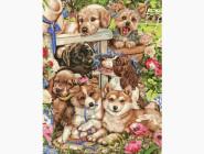 PGX21567 Картина раскраска Озорные щенки
