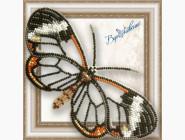 Вышивка бисером Бабочка из бисера на пластиковой основе Грета Ото