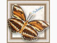 Бабочка из бисера на пластиковой основе Dryadula Phaetusa