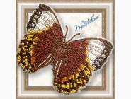 Вышивка бисером Бабочка из бисера на пластиковой основе Стихофтальма Луиза