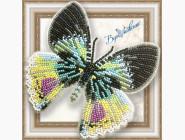Бабочка из бисера на пластиковой основе Альцидес аврора