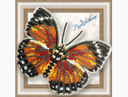 Бабочка из бисера на пластиковой основе Euphaedra Eleus
