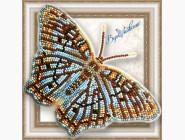 Бабочка из бисера на пластиковой основе Белый павлин