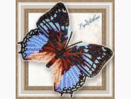 Бабочка из бисера на пластиковой основе Харакс Смарагдалис