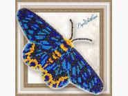 Вышивка бисером Бабочка из бисера на пластиковой основе Dysphania numana
