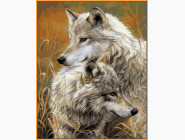 Степные волки (в раме)