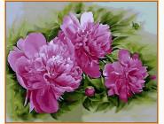 Розовые пионы (в раме)