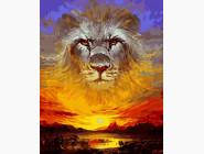 Животные и рыбки Закатный лев