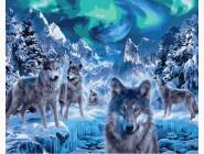 Животные и рыбки Волки и северное сияние