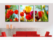 DZ093 Картина по номерам Триптих. Садовые тюльпаны Babylon