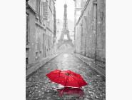 Парижский зонтик