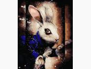 Загадочный кролик