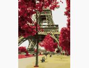 Цвет Парижа