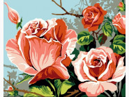 Цветенье роз