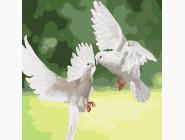 Белые голуби