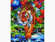 Rainbow Art Тигр на реке