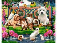 Домашние животные в парке