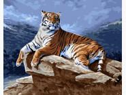 Тигр на рассвете