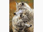картина по номерам Степные волки