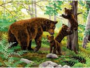 Медвежата на прогулке