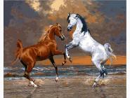 Лошади на берегу океана