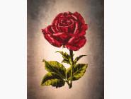 Вышивка бисером картины Волшебная страна Одинокая роза (FLF009)