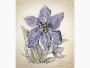 Цветы и натюрморты Вышивка бисером Идейка Утренняя роса (ВБ1008)