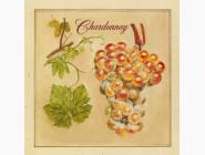 Цветы и натюрморты Вышивка бисером Идейка Шардоне (ВБ1034)