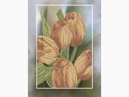 Цветы и натюрморты Картина бисером в рамке Идейка Весенний шарм (ВБ1040)