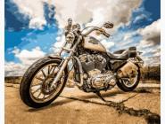 Абстракция и прочее  Harley Davidson