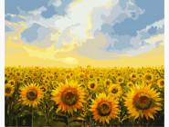 BK-G135 Картина раскраска Солнечное поле