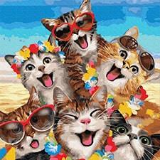 Коты и собаки: картины без коробки