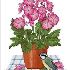Цветы и натюрморы