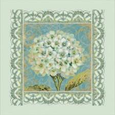 Цветы и натюрморты