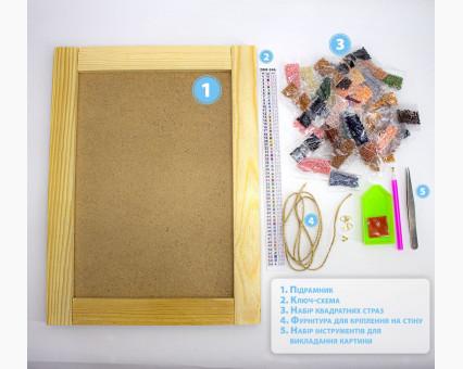 231728 набор по фото на подрамнике Портрет из страз по фото на подрамнике 80 х 100 см ТМ Алмазная мозаика фото набора
