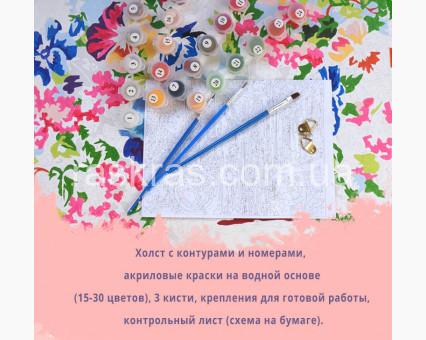 BK-GX25164 картина по номерам без коробки Енотики Rainbow Art фото набора