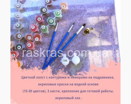 PGX29708 Картина раскраска Карлов мост Brushme Premium