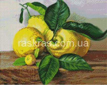ASM28 алмазная вышивка Лимоны ArtStory