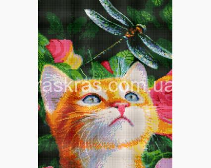 ASM16 алмазная вышивка Кот и стрекоза ArtStory