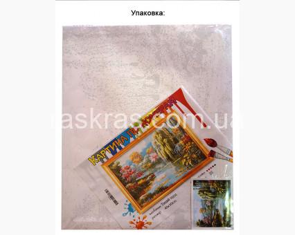 BRM9195 Картина раскраска Горный перевал