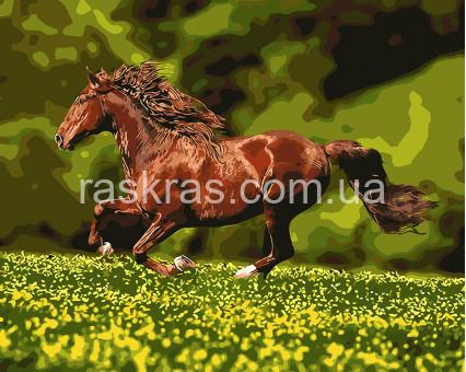 BK-GX8814 картина по номерам без коробки Скачущий конь Rainbow Art