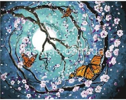 BRM21601 Картина раскраска Бабочки в лунном свете (Без коробки)