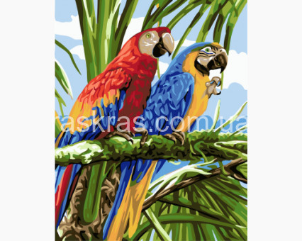BRM22339 Картина раскраска Попугаи Ара (Без коробки)