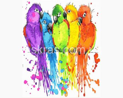 BRM22513 картина по номерам Радужные попугайчики Brushme